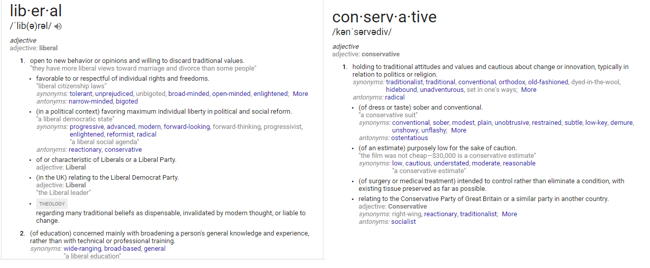 LiberalConservativeDefinition
